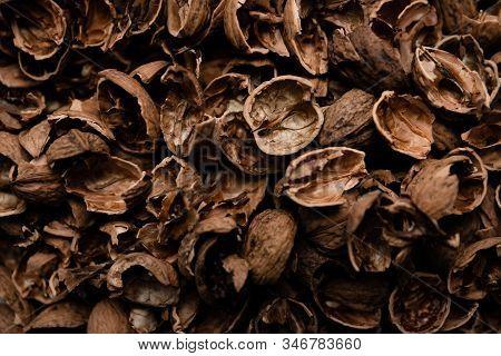 walnut shell,walnut shell background,top view of walnut shell,walnut shell contrast background,walnu