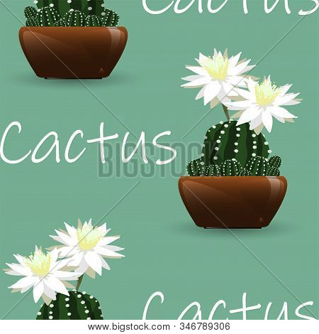 Seamless Pattern Of Cactus With White Flower Pattern On Green Background With Cactus Text. Vector Il