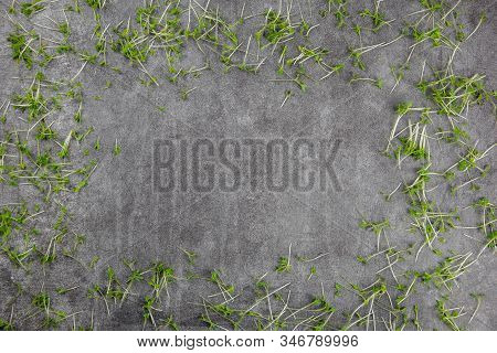 Watercress Salad On Natural Black Slate Stone Background Pattern With High Resolution. View From Abo