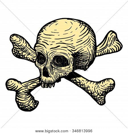 Hand Drawing Of A Skull Of A Dead Man, With Bones, On A White Background. Vector Illustration