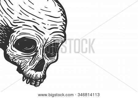 Banner Template With Skull Of A Dead Man And Place For Text On A White Background. Vector Hand Drawi