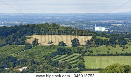 Vineyards On Doverow Hill, Stroud, Gloucestershire  With Javelin Park Incinerator Behind