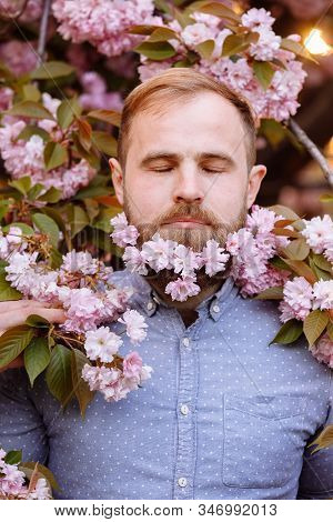 A Bearded Man With A Decorated Beard For The Spring Holiday. Flower In The Beard. Freshness Concept.