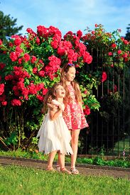 Portrait Of Two Happy Little Girls Embracing And Laughing At Sunny Summer Park