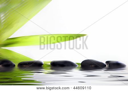 Spa Massage Stones In Water