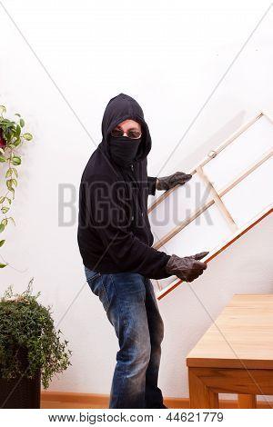 Burglar Steals A Picture