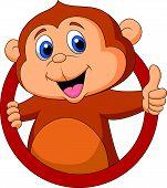 Vector illustration of Cute monkey cartoon thumb up poster