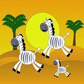 three amusing zebra hurry on the desert raster illustration poster