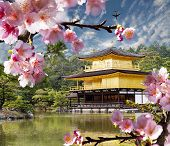 gold temple japan for adv or others purpose use poster