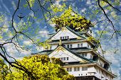Osaka Castle in Osaka, Japan for adv or others purpose use poster