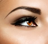 Brown Eye Makeup. Eyes Make-up. Beautiful Eyes Vintage Style Make up detail. Eyeliner poster