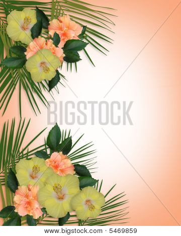 Tropical Hibiscus Flowers Border