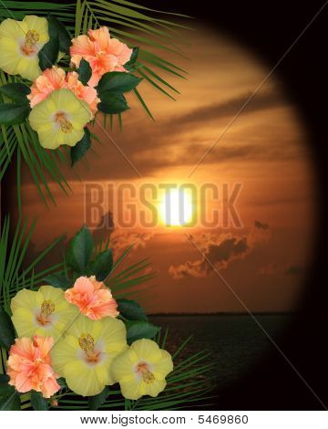 Tropical Flowers Border Sunset