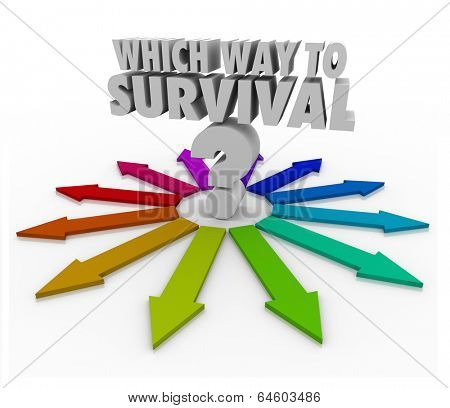 Which Way to Survival Question Arrows Pointing Freedom Safety