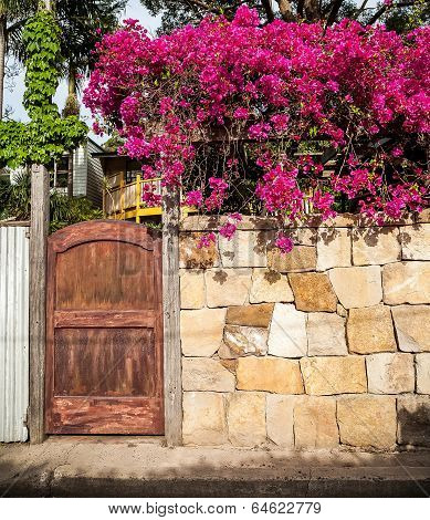 Lane Gate With Sandstone Wall And Bright Fuchsia Bougainvillea Flowers