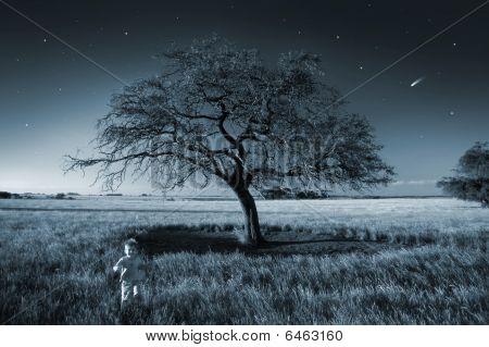 Boy Running In The Fairy Field