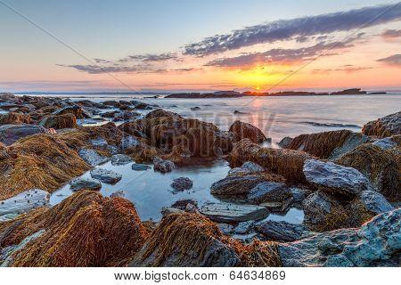 Sunrise At Sachuest Wildlife Refuge