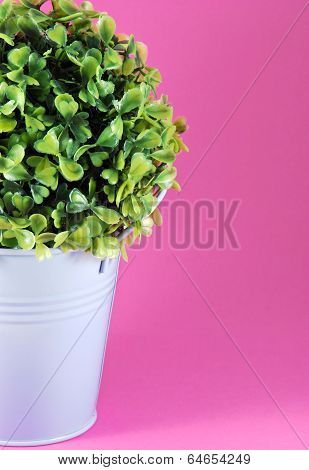 Image Of Tinny Planter With Flower