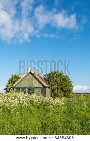 Old Wooden Barn Overgrown With Weeds