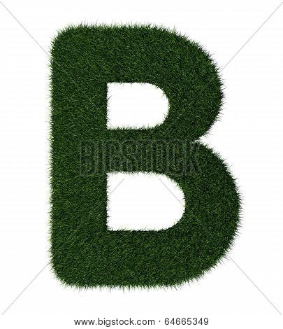 Grass alphabet-B