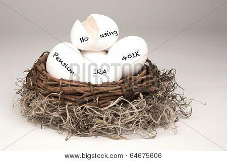 Nest Egg Broken
