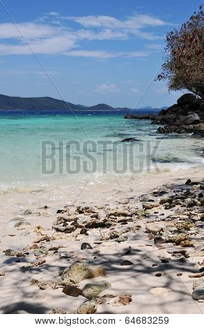 Tropical Beach Summer Day Landscape