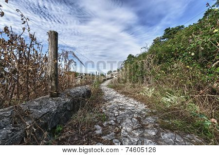 old Roman road near Palestrina