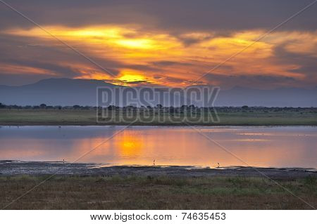 Sunset and lake in Tsavo East National Park in Kenya with an elephant in the background. poster