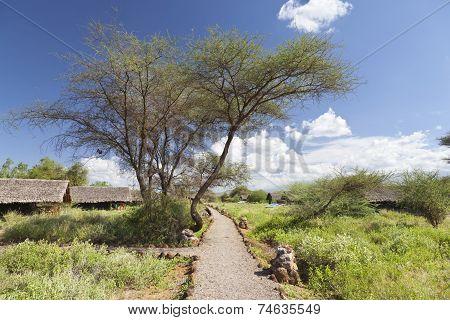 Kibo Safari Camp in Amboseli National Park in Kenya. poster