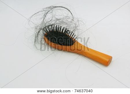 Hair Loss And Hair-comb