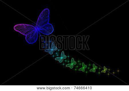 Florescent Colorful Butterflies