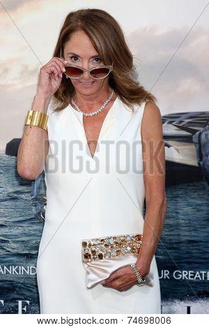 LOS ANGELES - OCT 26:  Lynda Obst at the