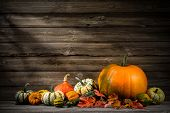 Thanksgiving day autumnal still life with pumpkins on old wooden poster