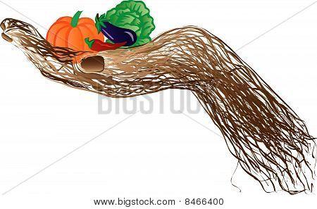 Vegetable  Hand