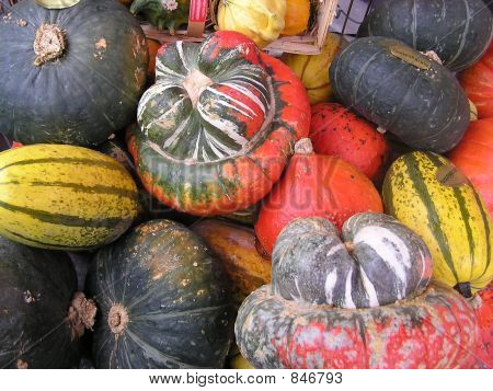 Vegetables diversity