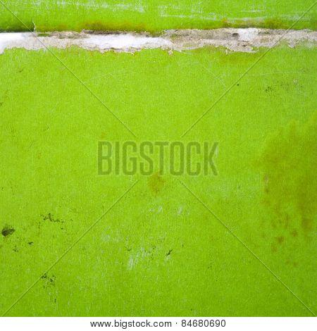 Green Paper