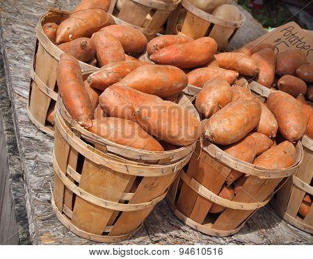 Sweet Potatoes In Bushels