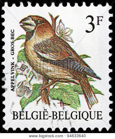 Hawfinch Stamp