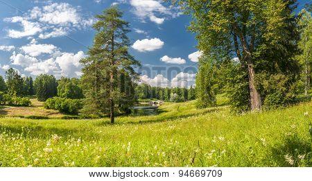 Summer Park Panorama