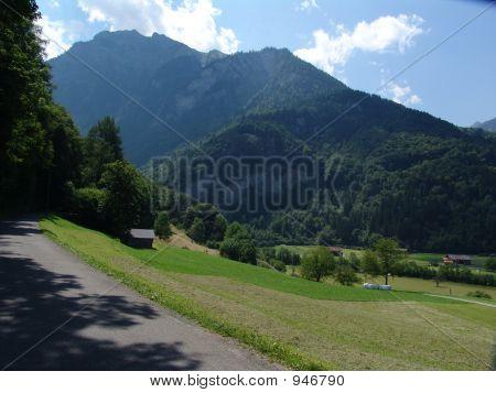 Wilderswill Mountain Pastoral Scene