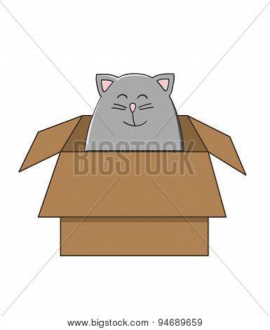 Cat In A Carton Box