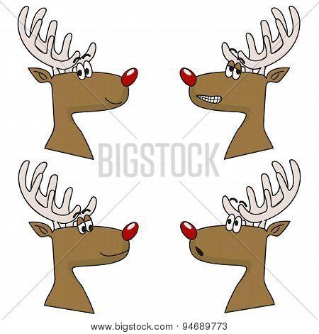 Deerfaces