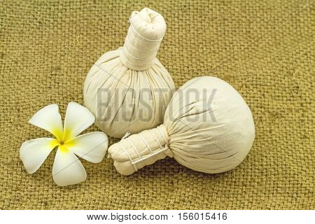 Spa herbal compressing ball and white frangipani flowers (Plumeria spp Apocynaceae Pagoda tree Temple tree) on brown sack fabric background