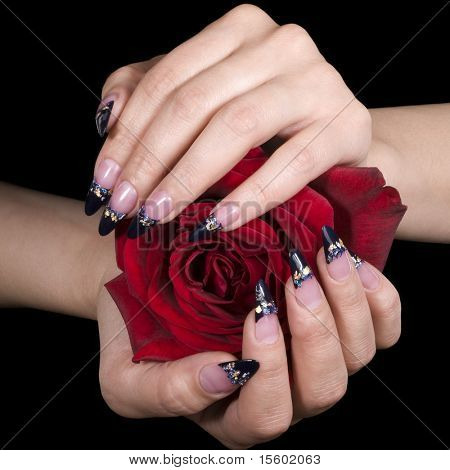 Elegant nail design. Woman hands with red rose.