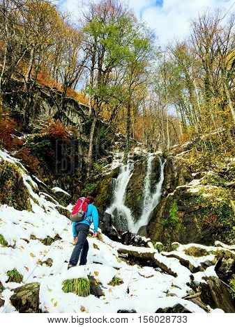 Hiker with rucksack going towards mountain waterfall in autumn forest with snow and yellow leaves. Healthy outdoor lifestyle concept.