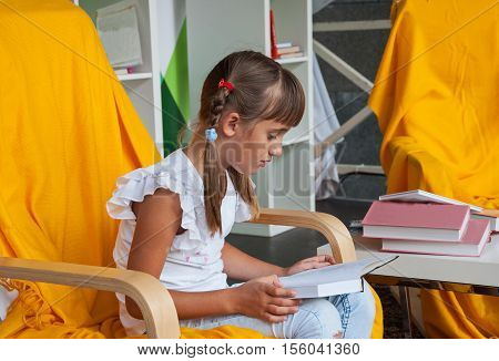 Sweet girl with pigtails reading an interesting book