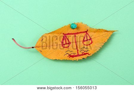 picture of a autumn walnut leaves with handwritten law scale