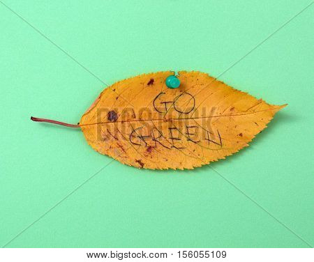 picture of a autumn walnut leaves with handwritten text go green
