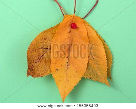picture of a autumn walnut leaves on green