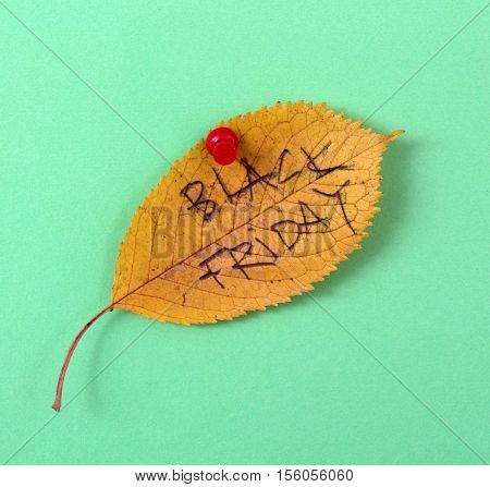 picture of a autumn walnut leaves with handwritten text black friday